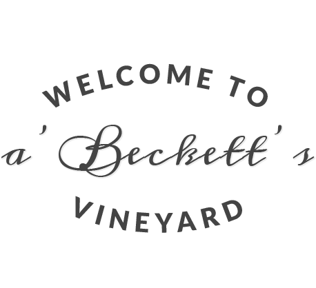 Welcome to a'Becketts Vineyard